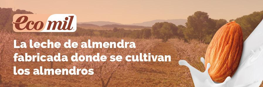 Menu.0.Home_.Slides.ES_.Almendros